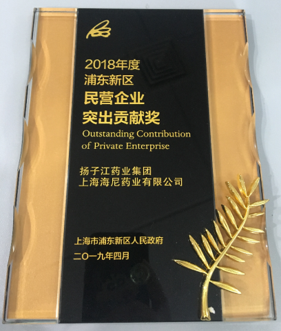2018 Pudong New Area Private Enterprise Outstanding Contribution Award
