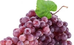 [Protect health] A large number of early autumn grapes are on the market